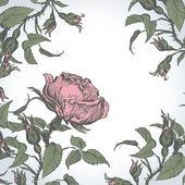 Vintage bakgrund med rosor. — Stockvektor