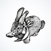 Hand drawing illustration with rabbit — Vector de stock