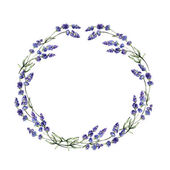 Watercolor lavender wreath — Stock Photo