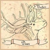 Card Deer. — Vector de stock