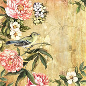 Vintage watercolor background with a bird — Stock Photo