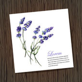Card with lavender — Stock Vector