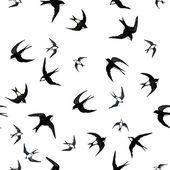 Seamless with swallows — Stock Photo