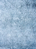 Nice hoarfrost on the glass — Stock Photo