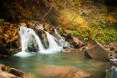 Deep forest waterfall in the Carpathians — Stock Photo
