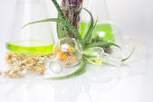 Extract of plants. Natural chemistry. — Stock Photo