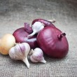 Red onions isolated on white — Stock Photo #22212269