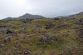 Iceland - Southwest Iceland - Landmannalaugar — Stock Photo