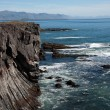 Iceland - The West - Peninsula Sneifellsnes - Cliffs — Stock Photo