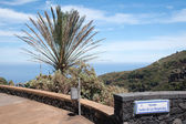 La Palma in 2013 - on the mirador — Stock Photo