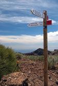 La Palma 2013 - signpost — Stock Photo