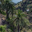 Постер, плакат: La Palma in 2013 sea view from Las Nieves