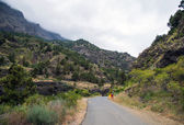 La Palma 2013 - Caldera de Taburiente — Stock Photo