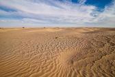 Sahara desert — Stock Photo