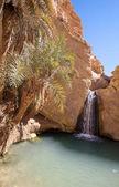 Waterfall in mountain oasis Chebika, Tunisia, Africa — Stock Photo