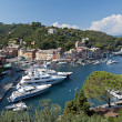 Italian riviera, aerial view of Portofino Italy - Stock Photo