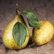 Pears still life country — Stock Photo