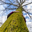 Stock Photo: Tree hugger environmentalist