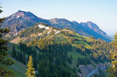 Summer view of mountains from a hiking trail at hurricane ridge — Stock Photo