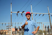 Worker at an Electrical Substation — Stock Photo