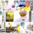Pharmaceutical Workers — Stock Video