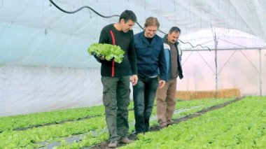 Family discuss the growing progress of lettuce in the greenhouse.