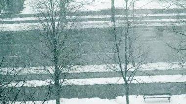 Street Scene in Winter — Stock Video