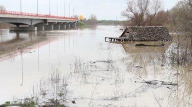 Spring Floods — Stock Video