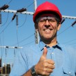 Постер, плакат: Electrical Utility Worker
