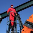 Oil and Gas Industry — Stock Photo #41443389