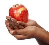 Apple in hands — Stock Photo