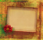 Grunge Frame For Congratulation With Flower — Stock Photo