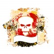 Skull grunge background — Stockvektor