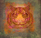 Vintage paper background with tiger — Stock Photo