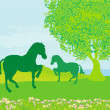 Horses in field - Stock Vector