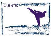Karate Grunge poster — Stock Vector