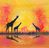 African savannah with reflection — Stock Photo