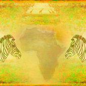 Zebra, Hand drawn sketch illustration, grunge background — Stock Photo