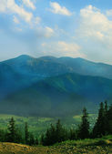 Mountains with green forest landscape. — Стоковое фото