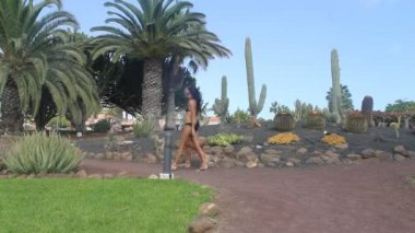 Couple on vacation in swimsuits walking in a tropical garden — Stock Video