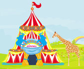 Circus with animals — Stock Vector