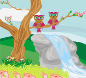 Sweet owls in spring scenery — Stock Vector
