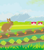 Rural landscape with hare — Vector de stock