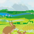 Stock Vector: Bunnies in green meadow
