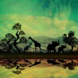 Safari in Africa silhouette of wild animals reflection in water — Stock Photo