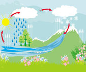 Cycle water in nature environment  — Stock Vector