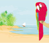 Colourful parrot bird sitting on the perch on the beach — Cтоковый вектор