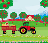 Landscape with apple trees and man driving a tractor with a trai — Stock Vector