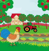 Rural landscape - rooster, tractor and orchard — Stock Vector