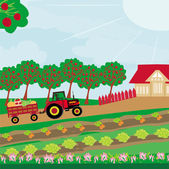 Rural landscape -  tractor and orchard  — Stock Vector
